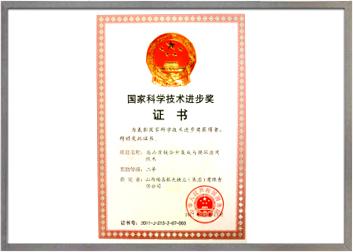 国家技术进步奖